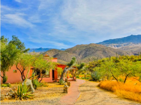 """Soak in desert beauty at the <a href=""""http://www.tanqueverderanch.com/activities/"""" target=""""_blank"""">Tanque Verde Ranch</a> in"""
