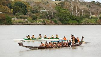 WANGANUI, NEW ZEALAND - MAY 14:  Prince Harry paddles a waka on the Whanganui River during a visit to Putiki Marae on May 14, 2015 in Wanganui, New Zealand. Prince Harry is in New Zealand from May 9 through to May 16 attending events in Wellington, Invercargill, Stewart Island, Christchurch, Linton, Whanganui and Auckland.  (Photo by Hagen Hopkins/Getty Images)