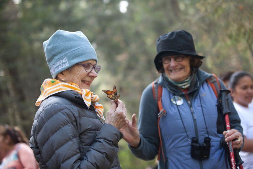An ecotourist admires a single monarch. © Court Whelan