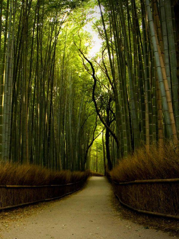 """Eightfold path of Zen    <a rel=""""nofollow"""" href=""""https://www.zen-buddhism.net/"""" target=""""_blank"""">www.zen-buddhism.net</a>"""
