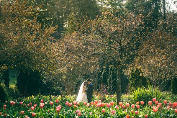 """Leigh and Will had a beautiful wedding at Duke Chapel in Durham, North Carolina."" --<i>Hooman Bahrani</i>"