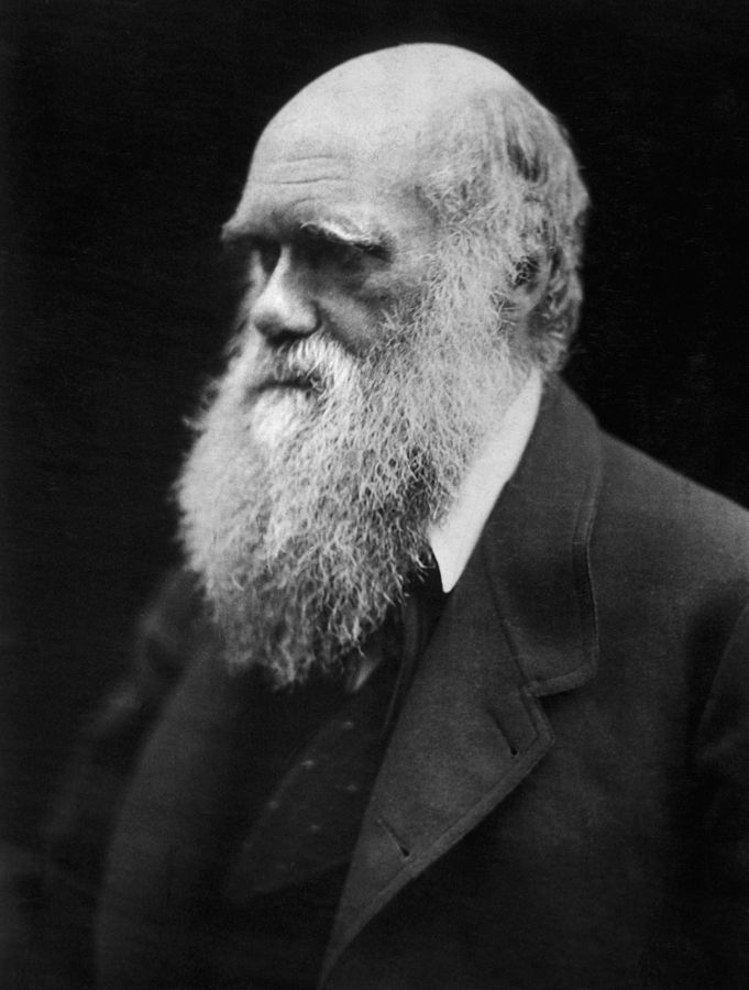 Charles Darwin, photographed by Julia Margaret Cameron