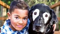 Boy With Rare Skin Disorder Finds A Buddy In His Dog