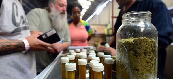 Do Not Delay: Implement Marijuana Legalization In California
