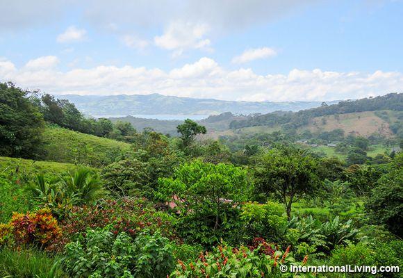 <p>Grecia, Costa Rica</p>