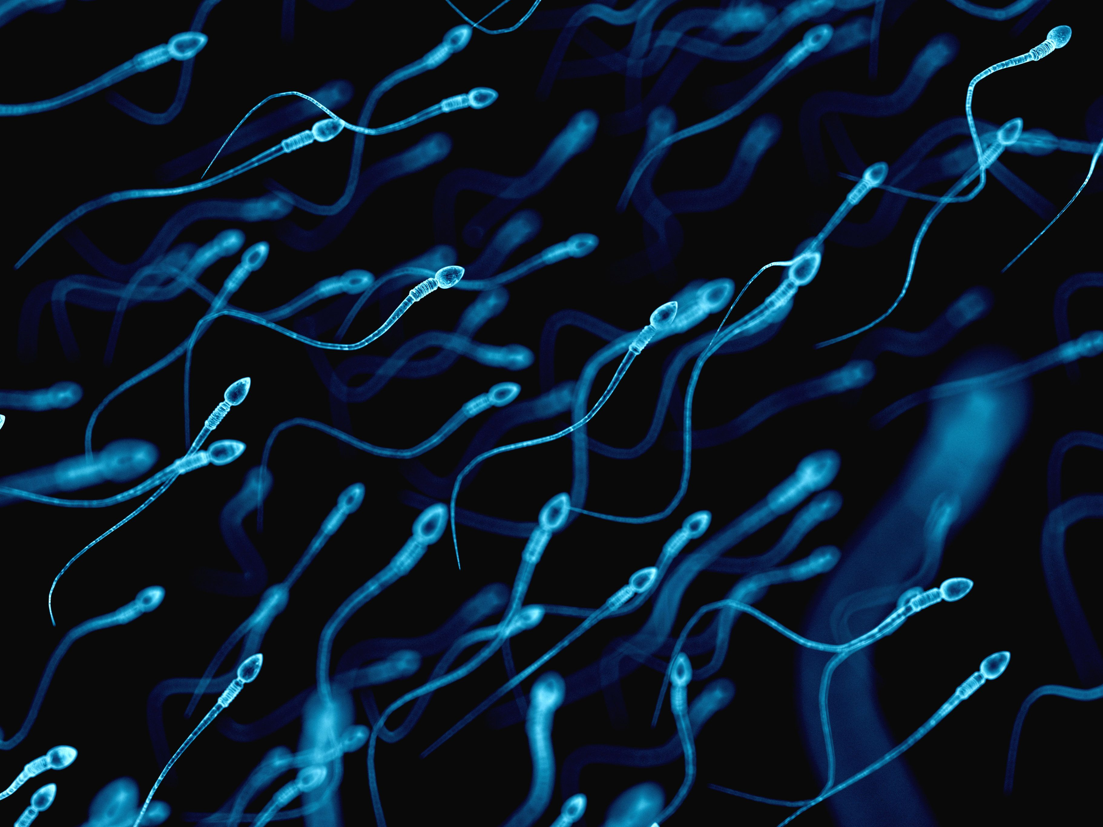 This Smartphone App Can Test The Quality Of Your Sperm At