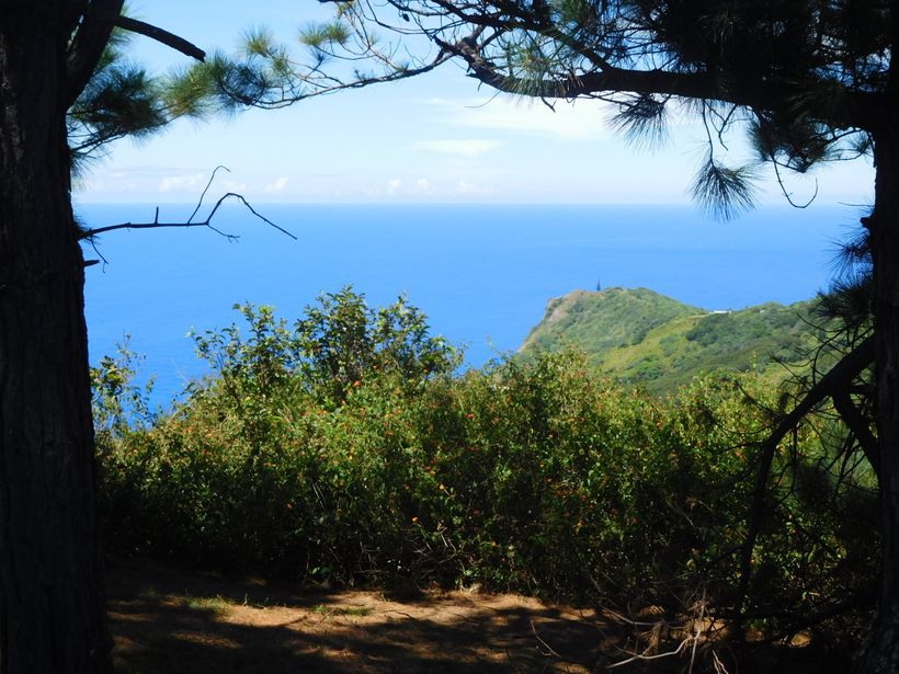 From Tahiti To Pitcairn Island Part 3 Life Today At The