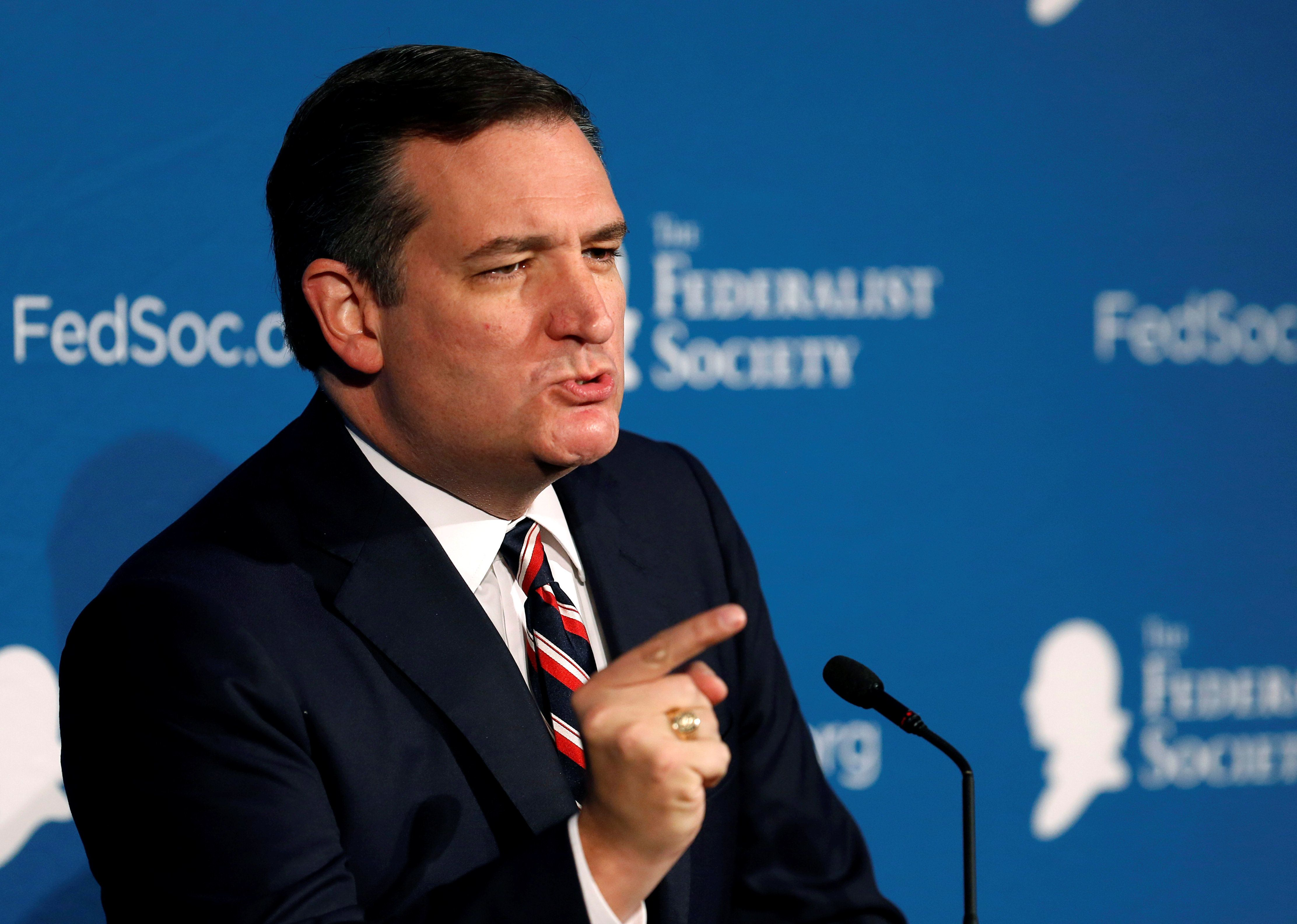 Senator Ted Cruz (R-TX) delivers remarks at the Federalist Society 2016 National Lawyers Convention in Washington, U.S., November 18, 2016.    REUTERS/Gary Cameron
