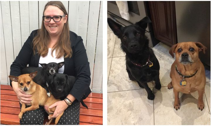 (Left) Sgt Jessica McRorie poses with her three Chihuahuas, Sophie, David and Little Edie. (Right) Det Tara Cuccias' dogs Zoe