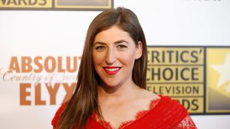 Actress Mayim Bialik poses at the 4th annual Critics' Choice Television Awards in Beverly Hills, California June 19, 2014. REUTERS/Danny Moloshok (UNITED STATES - Tags: ENTERTAINMENT)
