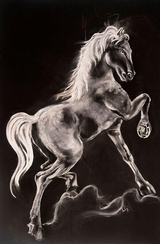 Aida Novosel Savic,  White horse, 42x63 inches, 2017, Chalk, charcoal
