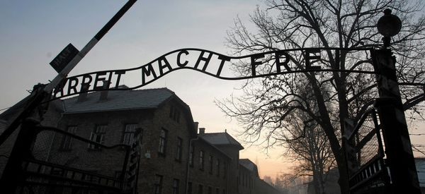 Protesters Slaughter Sheep, Strip Naked In Bizarre Action At Auschwitz