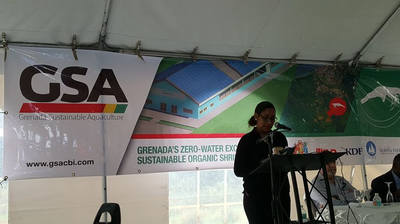 Grenada sustainable Aquaculture Project launch