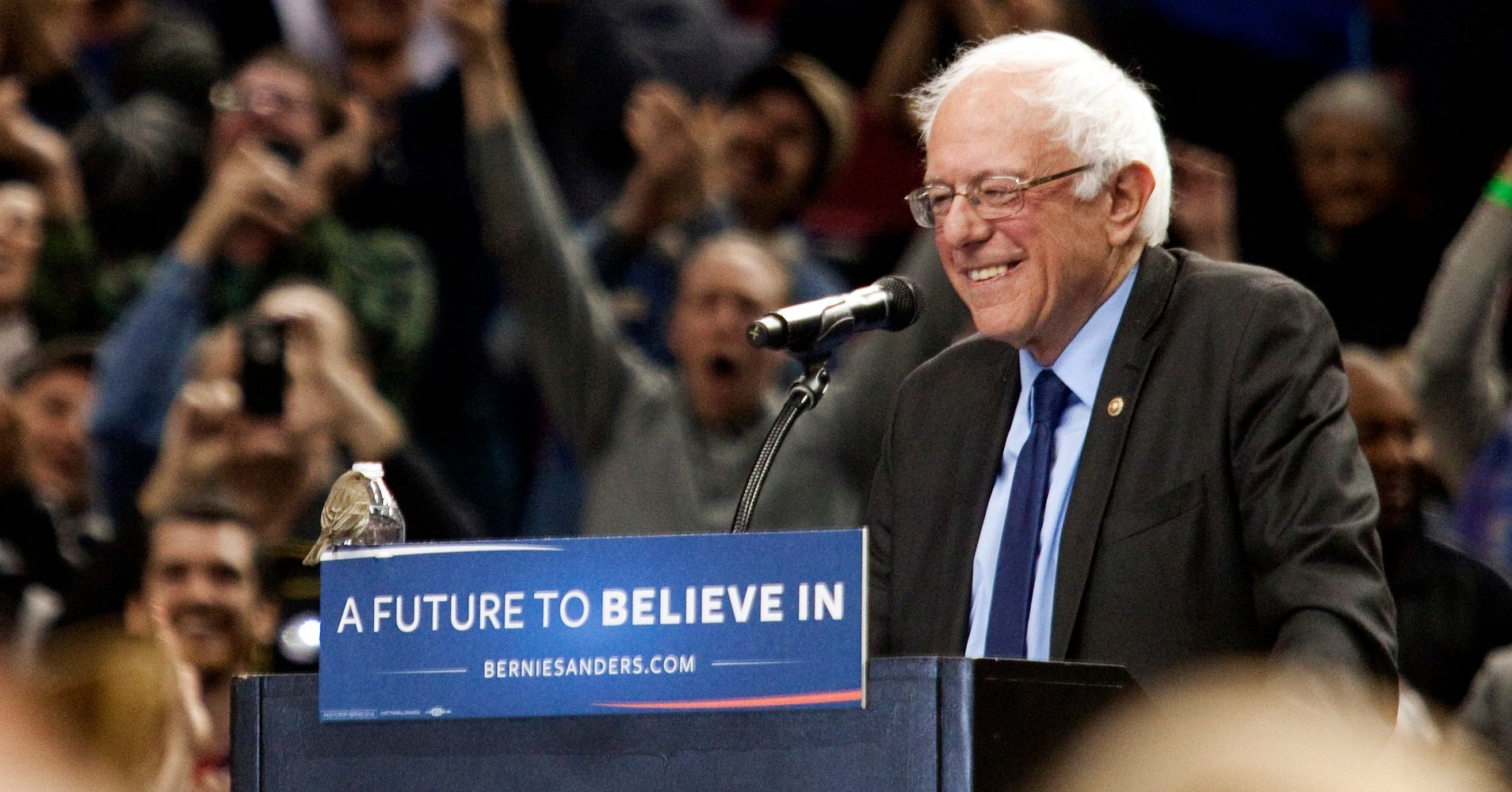 a bird landed on bernie sanders podium exactly a year ago today