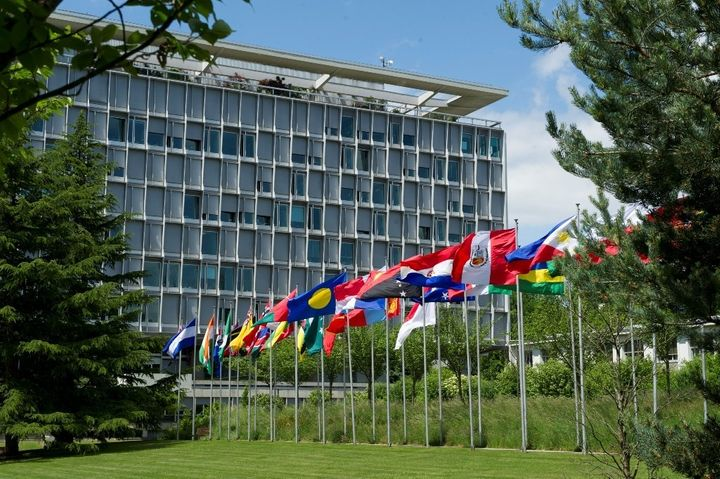 <p>WHO Member State Flags at WHO Headquarters Geneva </p>