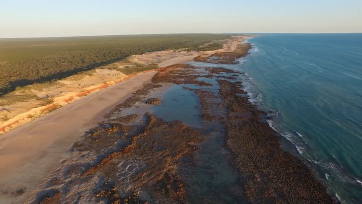 Paleontologists from the University of Queensland have been studying dinosaur footprints along this coast in Western Australi