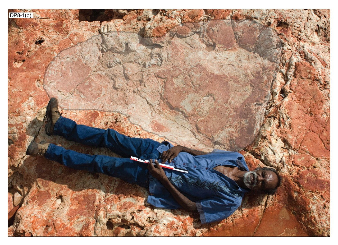 Richard Hunter is seen lying next to the dinosaur print, which measures 5 feet 7 inches.