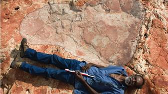 A man is seen lying next to the dinosaur print which measures 5 feet 9 inches