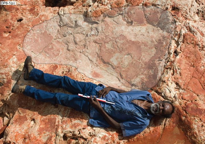 Richard Hunteris seen lying next to the dinosaur print, which measures 5 feet 7 inches.