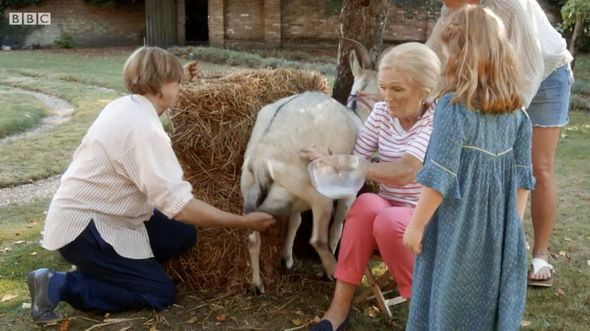 Mary Berry Gets On The Wrong Side Of A Goat In New Cooking