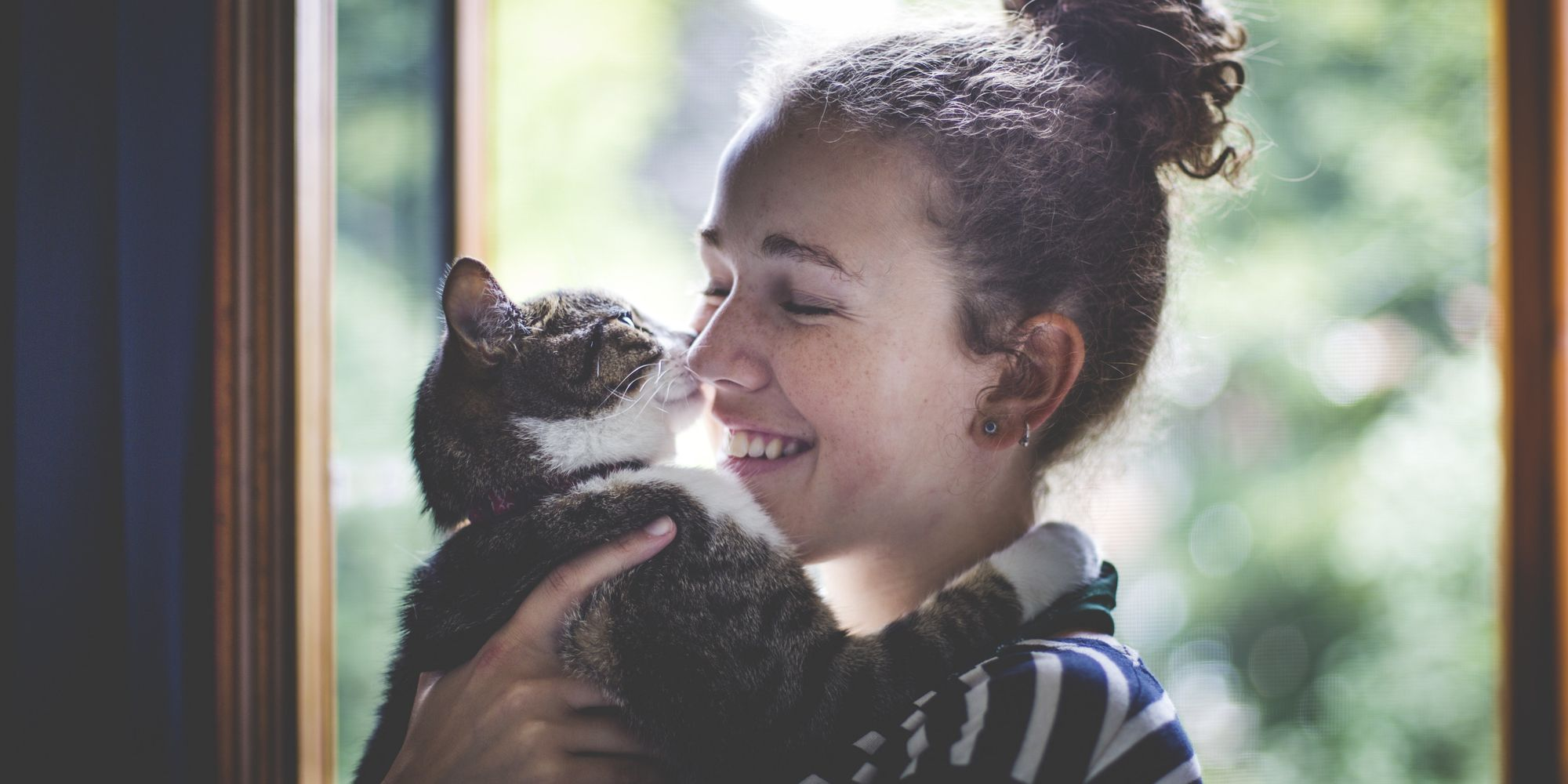 Understanding the Human—Cat Relationship: Human Social ...