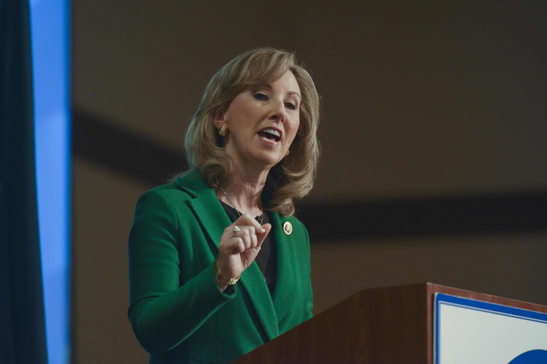 Rep. Barbara Comstock (R-Va.)