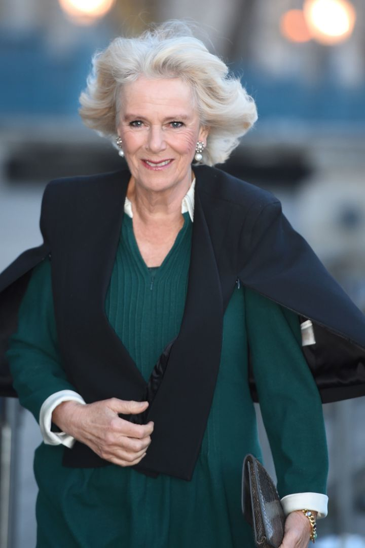 Camilla arrives to attend the U.K. CEO Cook Off in support of U.K. Harvest and the Jamie Oliver Food Foundation in London on