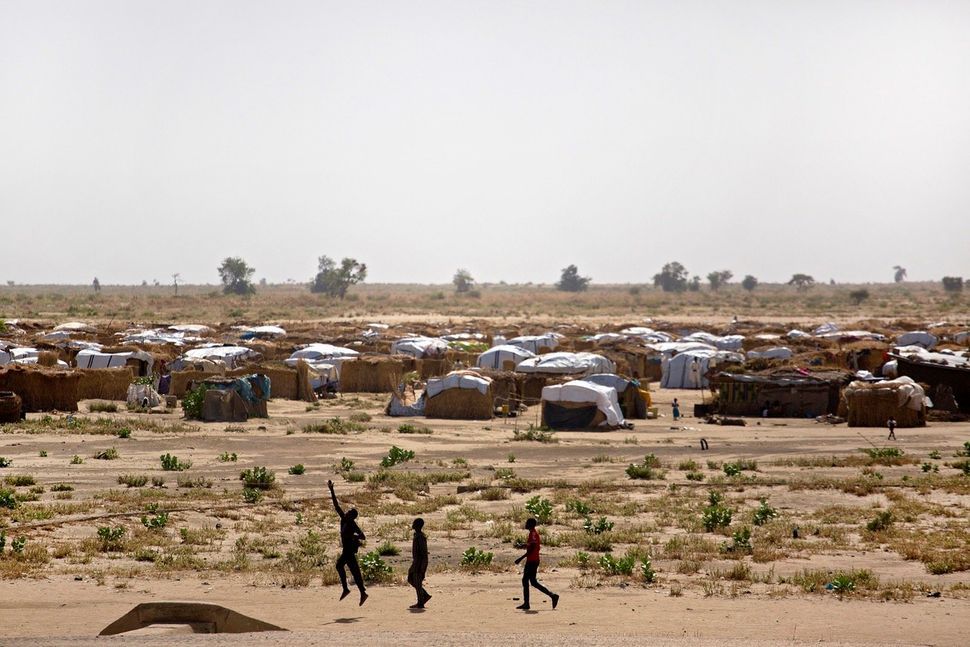 Informal IDP camps in Monugno, a remote town in Nigeria's northeastern Borno State.