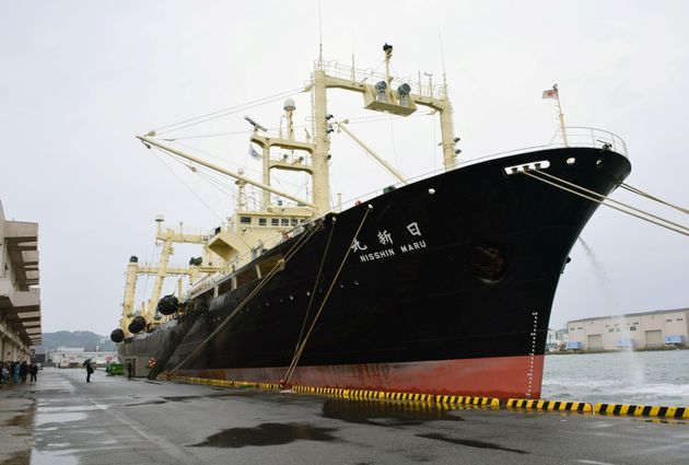Japanese whaling vessel the Nisshin Maru returns to the Shimonoseki port in southwestern Japan in this...