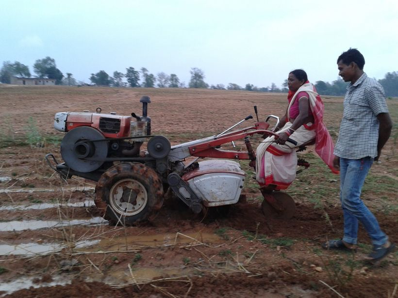 Tilling the soil in Bihar, India.