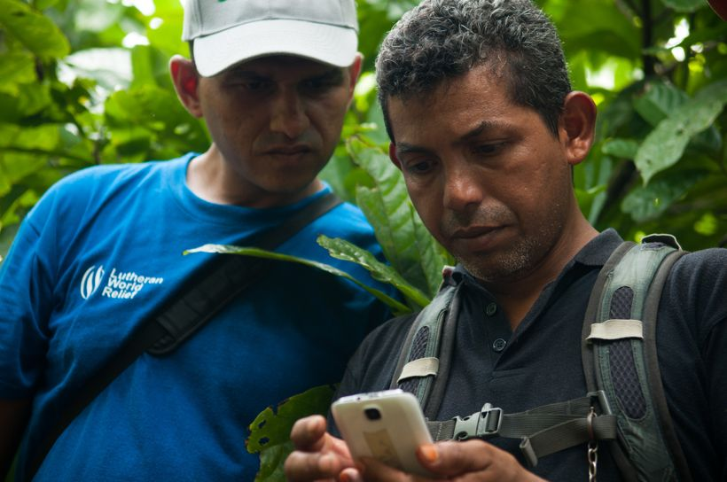 In Nicaragua, cocoa producers use smart phones to take photographs and send and receive messages pertaining to their crops
