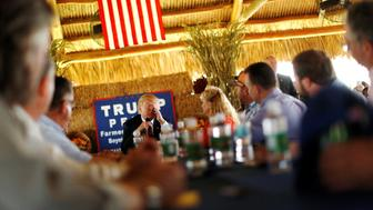 Republican U.S. presidential nominee Donald Trump wipes his eyes as he participates in a round-table discussion with farmers at a farm market in Boynton Beach, Florida, U.S. October 24, 2016. REUTERS/Jonathan Ernst