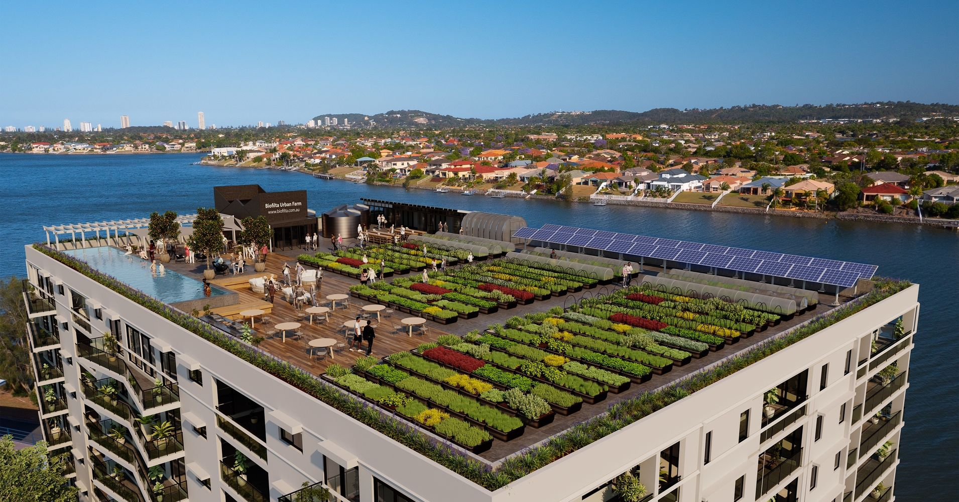 urban rooftop farm powered by rainwater and composted food waste huffpost. Black Bedroom Furniture Sets. Home Design Ideas
