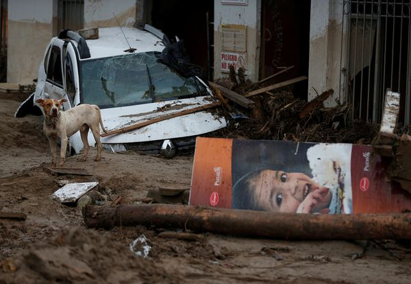 A dog wanders a street destroyed after flooding and mudslides in Mocoa on April 2.