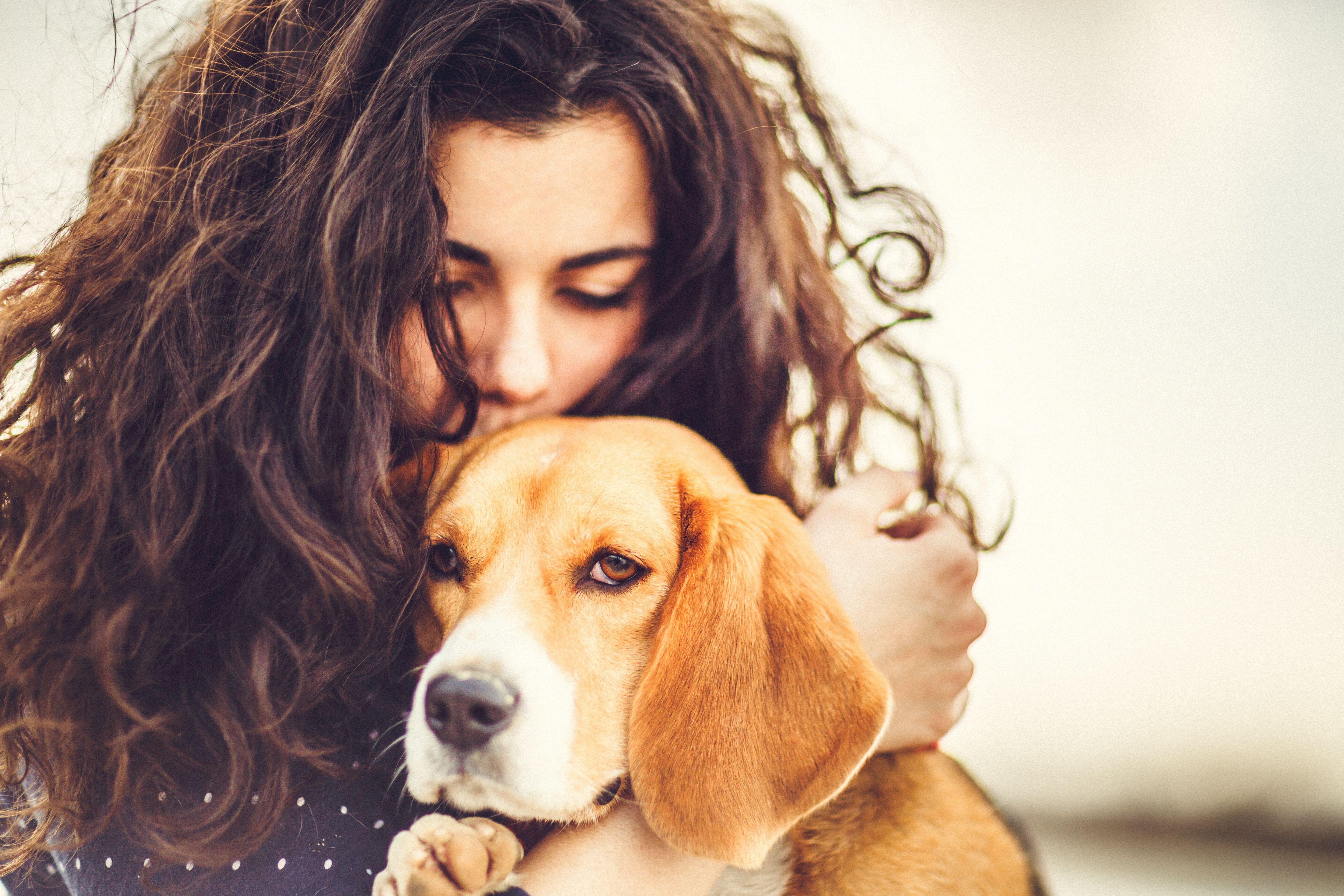 6 Reasons You Should Get The Dog You've Always