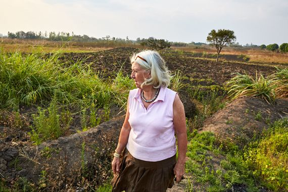 Margriet inspects one of the fields which is farmed by Green Malata's agricultural students. Blantyre, Malawi, 2016.