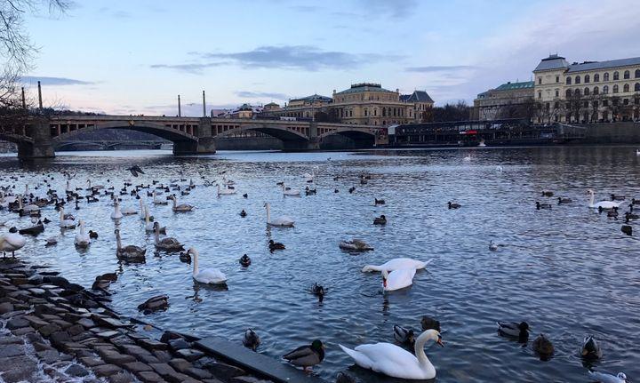 <p>Prague, Czech Republic</p>
