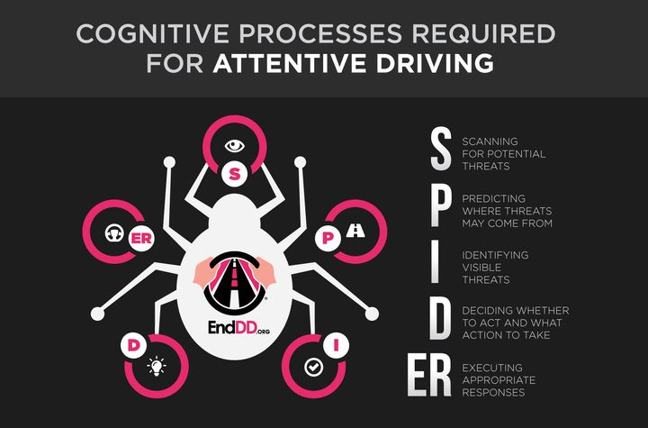 """<p>Adapted from """"SPIDER: A Framework for Understanding Driver Distraction,"""" David Strayer and Donald Fisher, February 2016. </p>"""