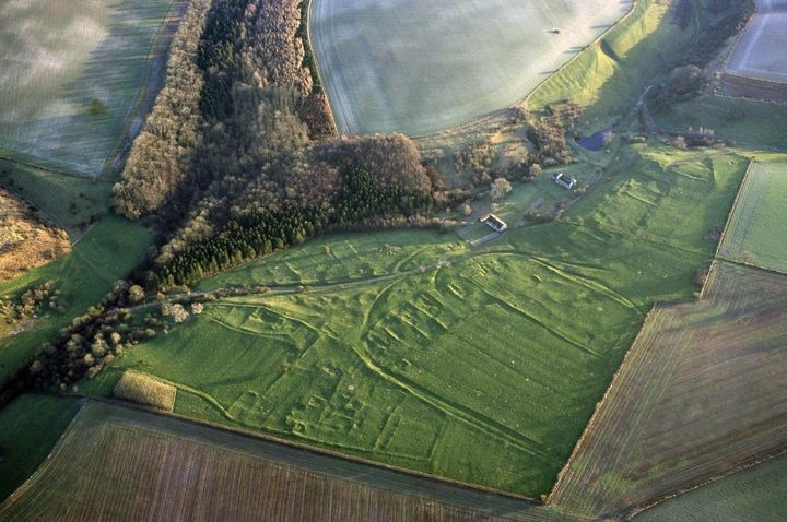 The collection of bones come from the deserted Medieval village of Wharram Percy in north Yorkshire