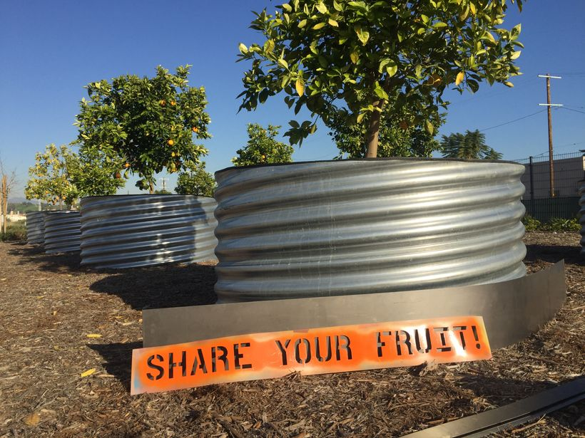 Monument to Sharing, Fallen Fruit's Public Artwork at Los Angeles State Historic Park