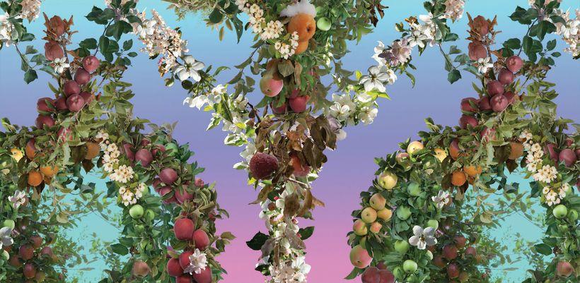 Endless Orchard Wallpaper