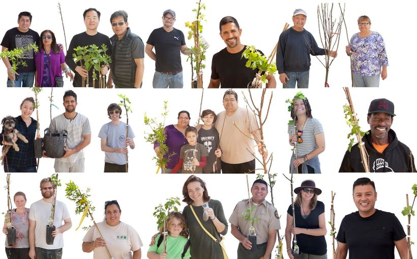 Endless Orchard Fallen Fruit Adoption Portraits at LA State Historic Park in Downtown LA, 2016