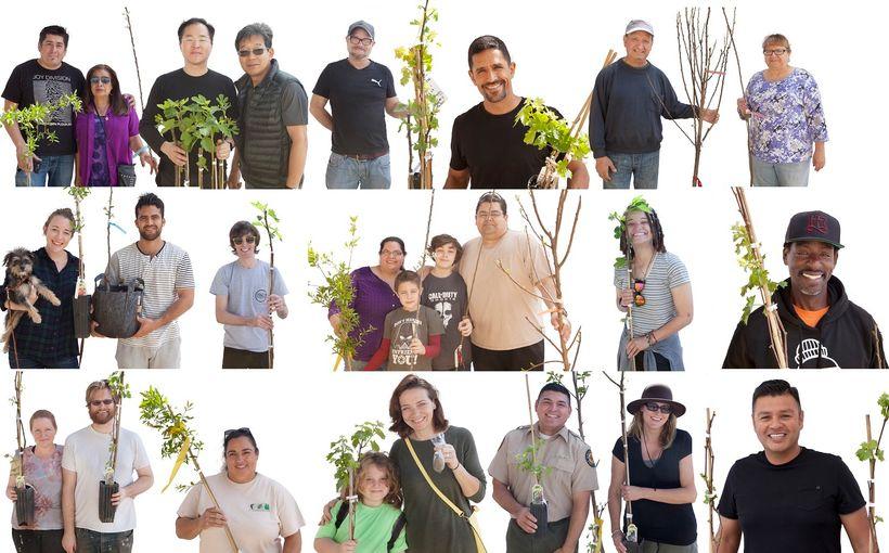 Endless Orchard Fallen Fruit Adoption Portraits at LA State Historic Park in Downtown LA, 2016
