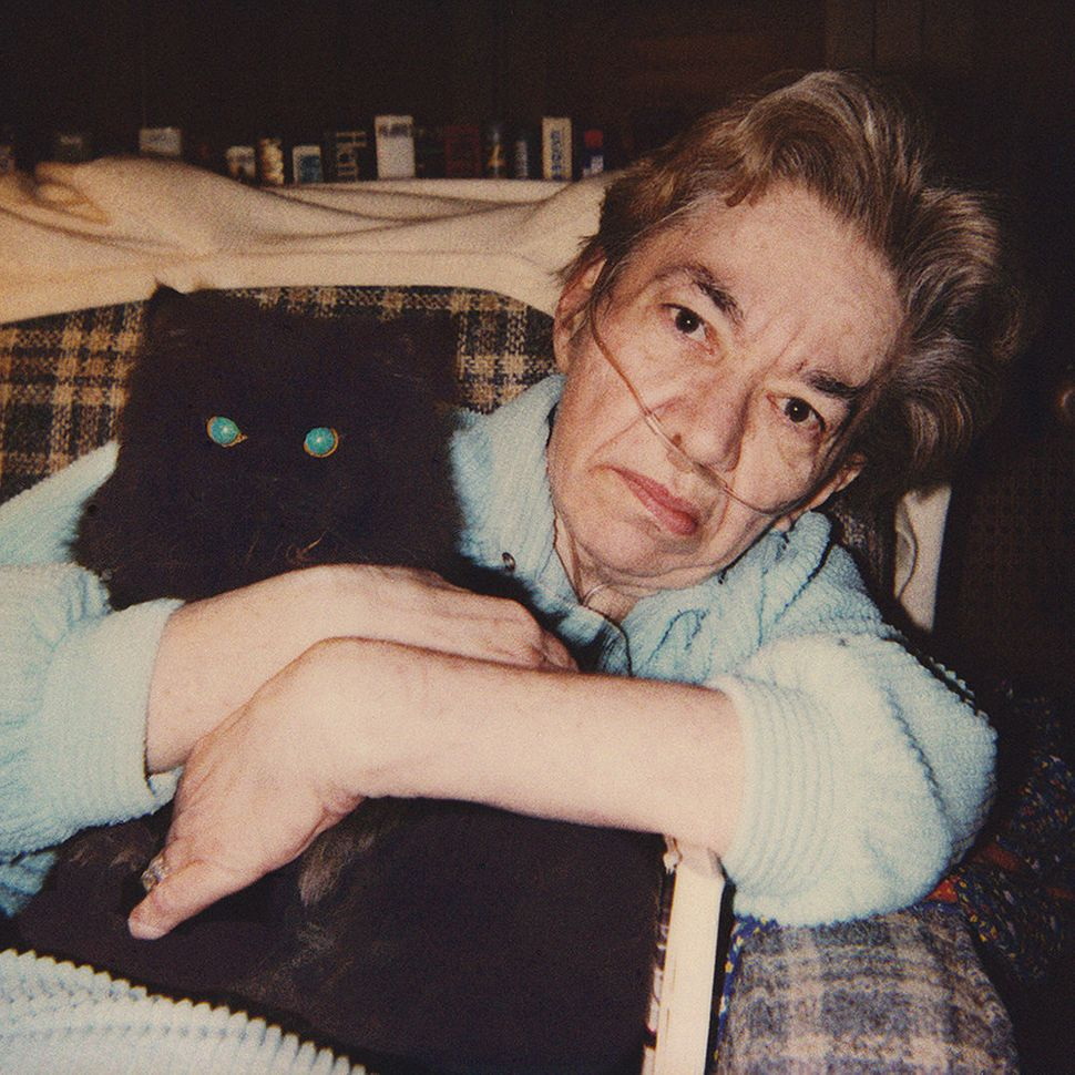 """Mom with her last cat, Max Katz,1985."""
