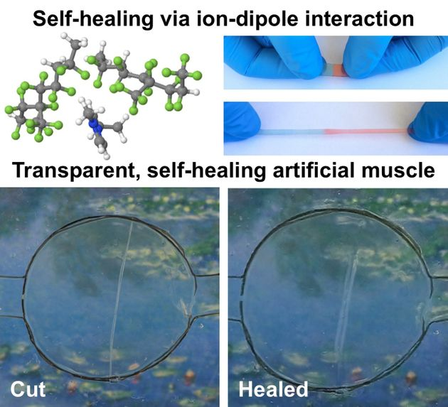 This Self-Healing Phone Screen Could Go Into Production In Just Three