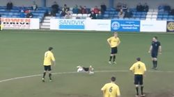 Dog Interrupts Soccer Game For 7 Minutes And Becomes The