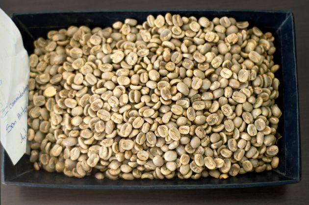 Green, unroasted coffee
