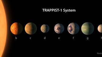 UNSPECIFIED:  In this NASA digital illustration handout released on February 22, 2017, an artist's concept shows what the TRAPPIST-1 planetary system may look like, based on available data about the planets' diameters, masses and distances from the host star. The system has been revealed through observations from NASA's Spitzer Space Telescope as well as other ground-based observatories, and the ground-based TRAPPIST telescope for which it was named after. The seven planets of TRAPPIST-1 are all Earth-sized and terrestrial, according to research published in 2017 in the journal Nature. TRAPPIST-1 is an ultra-cool dwarf star in the constellation Aquarius, and its planets orbit very close to it. They are likely all tidally locked, meaning the same face of the planet is always pointed at the star, as the same side of our moon is always pointed at Earth. This creates a perpetual night side and perpetual day side on each planet. TRAPPIST-1b and c receive the most light from the star and would be the warmest. TRAPPIST-1e, f and g all orbit in the habitable zone, the area where liquid water is most likely to be detected. But any of the planets could potentially harbor liquid water, depending on their compositions. In the imagined planets shown here, TRAPPIST-1b is shown as a larger analogue to Jupiter's moon Io. TRAPPIST-1d is depicted with a narrow band of water near the terminator, the divide between a hot, dry day and an ice-covered night side. TRAPPIST-1e and TRAPPIST-1f are both shown covered in water, but with progressively larger ice caps on the night side. TRAPPIST-1g is portrayed with an atmosphere like Neptune's, although it is still a rocky world. TRAPPIST-1h, the farthest from the star, would be the coldest. It is portrayed here as an icy world, similar to Jupiter's moon Europa, but the least is known about it. (Photo digital Illustration by NASA/NASA via Getty Images)