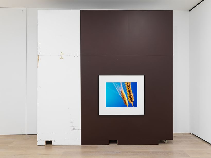 Installation view, Christopher Williams, <em>Open Letter: The Family Drama Refunctioned? (From the Point of View of Productio