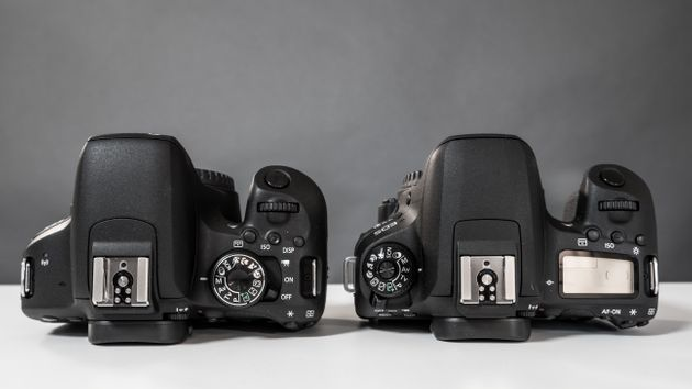 Canon T7i vs Canon 77D - Which Should You Buy | HuffPost